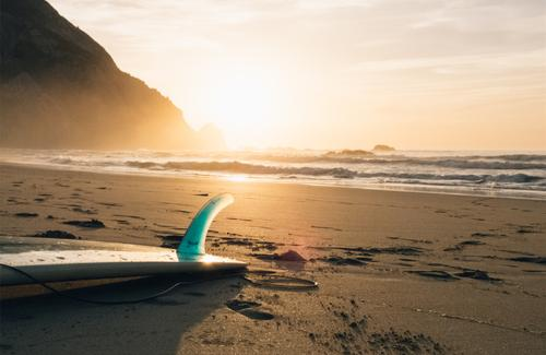 Whales bring small business marketing open