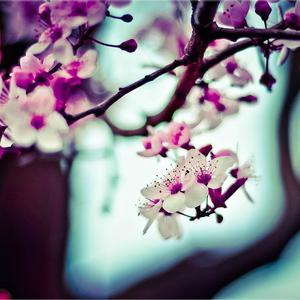 "PS4 oyunu ""Hitman"""